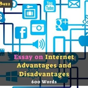 Essay on Internet Advantages and Disadvantages