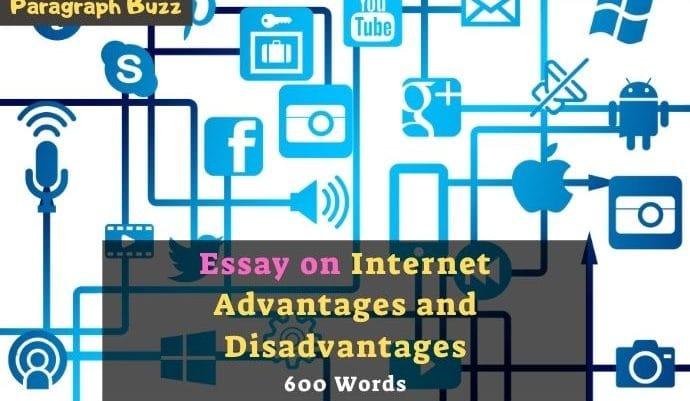 Essay on Internet Advantages and Disadvantages