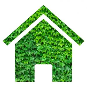 green energy homes